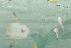 """Sylvia Earle: """"Precisamos parar a 'mineração' do oceano"""""""
