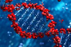 """""""A ciência do genoma precisa de diversidade"""""""