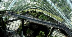 Projetos que valorizam a vitalidade das cidades