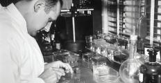4 cientistas falam sobre como tornar a divulgação científica mais acessível