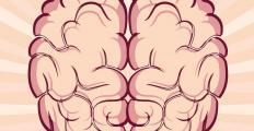 Como nosso cérebro nos torna quem somos
