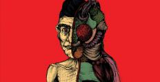 Lições de Kafka e Nabokov