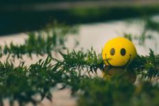 Pascal Bruckner e o mal da felicidade